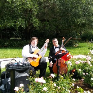 Guitar & Cello duo